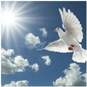 GodsGift-holy-spirit